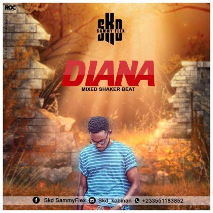 SKD Sammy Flex - Diana (Mixed By ShakerBeatz)