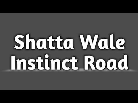 Shatta Wale – Instinct Road (Prod. By Paq)
