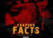 Yaa Pono – Facts (Shatta Wale, Sarkodie Diss) (Prod By Ray Rock)