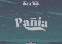 Shatta Wale - Pania