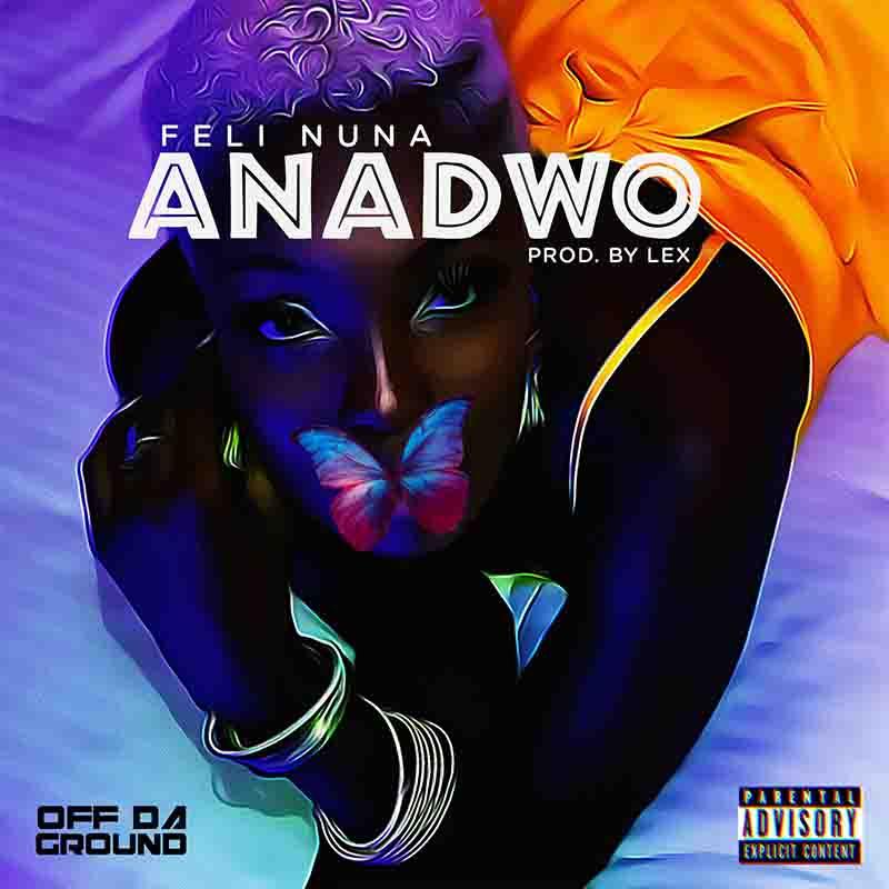 Feli Nuna - Anadwo (Prod. by Lex)